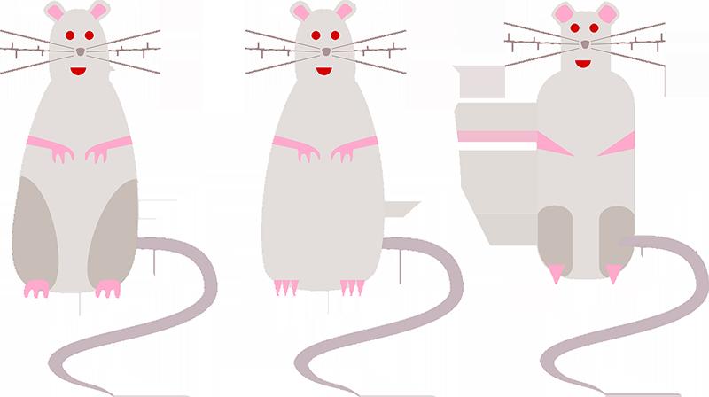 O Rato do Campo e o Rato da Cidade, fábula adaptada de Esopo